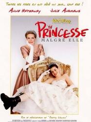 8711875938481 PRINCESSE malgre elle FR DVD