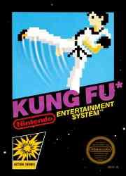 45496630119 Kung Fu (Master) FR NES